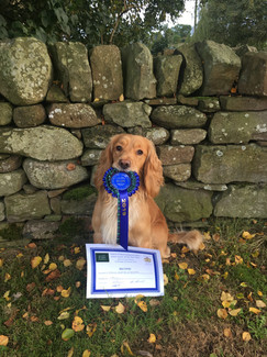 2nd place in his second trial