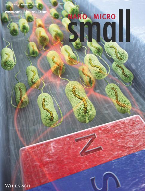 2018_Small_Yazdi_COVER.jpg