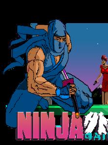 Ninja Gaiden: An MS Paint Adventure!
