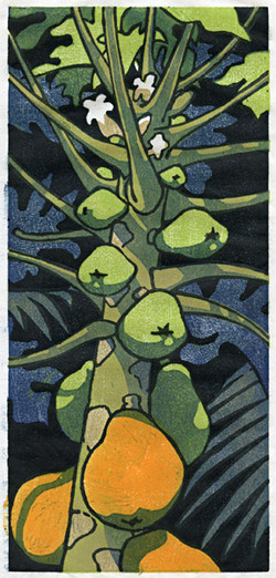 """More Papayas"" by Eve Furchgott"
