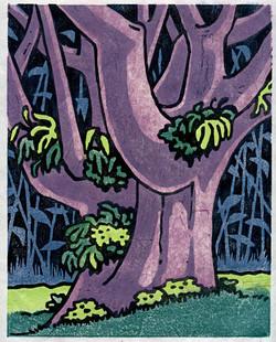 """Big Tree"""