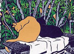 """""""Jungle Cats"""""""