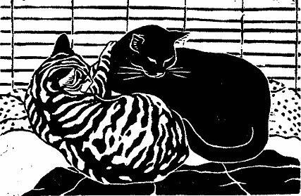 """""""Cat Nap II"""""""