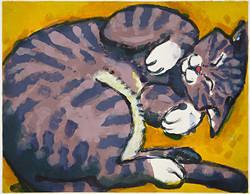 """""""Cat-in-a-Box"""" by Eve Furchgott"""