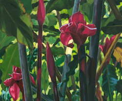 """""""Torch Ginger Forest"""""""
