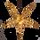 Thumbnail: Estrella Para Iluminar