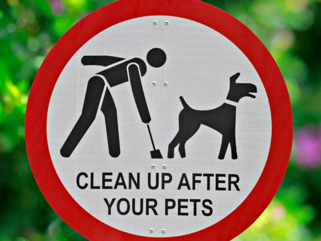 Clean Up After Your Pet!