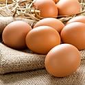 Tasmanian Free Range Choice Eggs