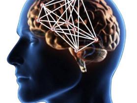 Lesiones deportivas II: Mapas cerebrales alterados