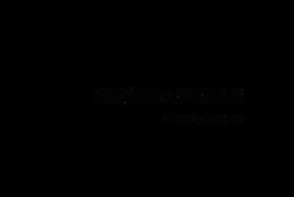 Associazione Guardastelle.png