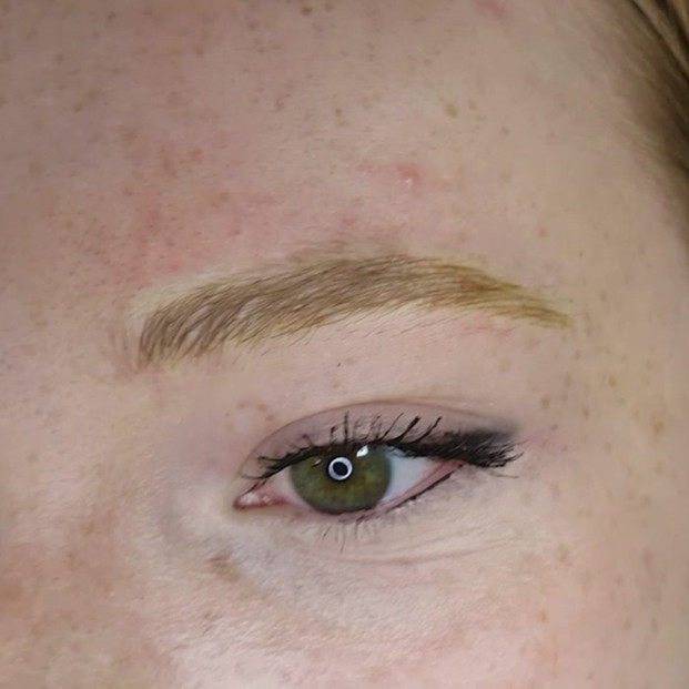 3D Realism Brushed up Blonde Eyebrows Microblading by El Truchan