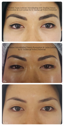 Healed Eyebrows Microblading with Shadin