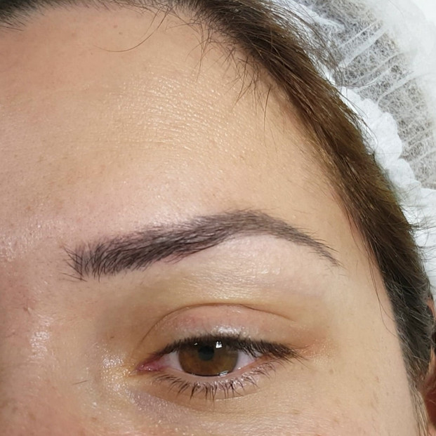 Healed Eyebrows Microblading after 1 ses