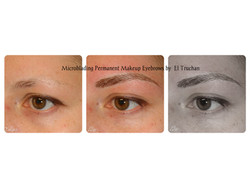 Permanent makeup microblading by El Truchan _ Perfect Definition