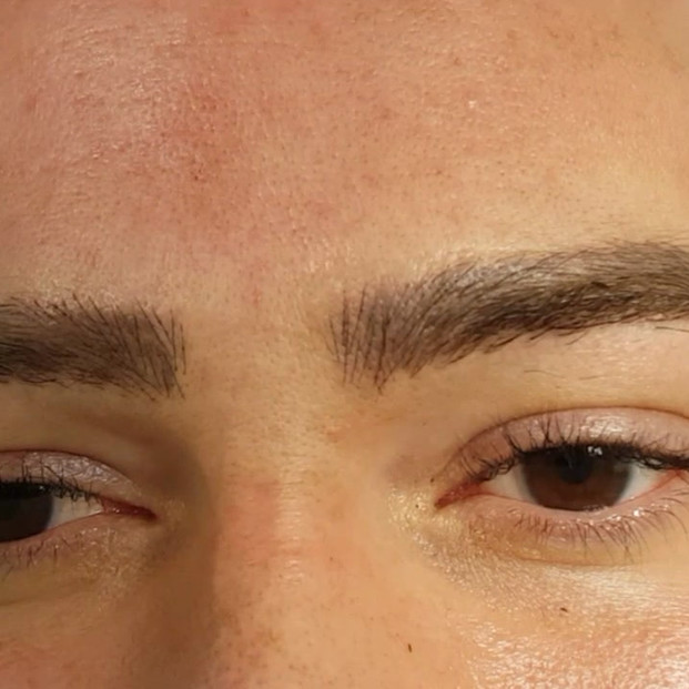 Healed Male Microblading 3D brows over old tattoo by El Truchan after 1 sess