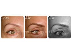 Semi Permanent Eyebrows by El Truchan CPCP.jpg