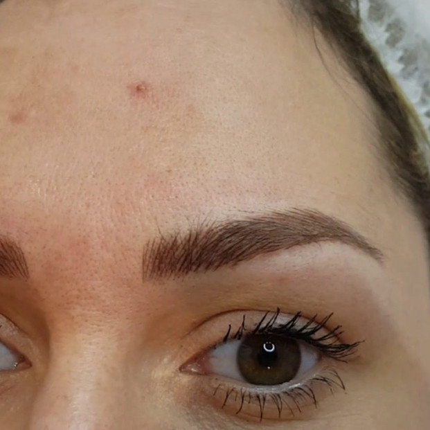 Natural Structured Eyebrows Microblading