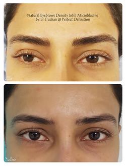 Natural Eyebrows Density Infill Microbla