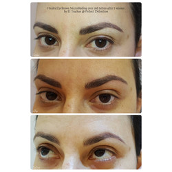 Healed Eyebrows Microblading over old ta