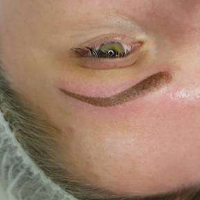 Ombre Pixalated Powder Eyebrows Microsha