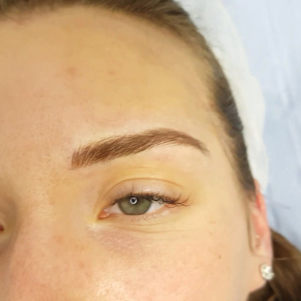 3d Realism Eyebrows Microblading by El T