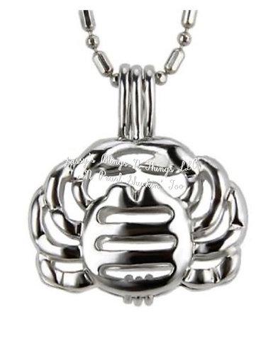 """*Zodiac Cancer Cage Pendant w/18"""" Chain (SP)"""