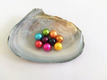 Jo's Paradise Single Oyster (1)