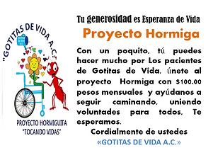 PROYECTO HORMIGA.png
