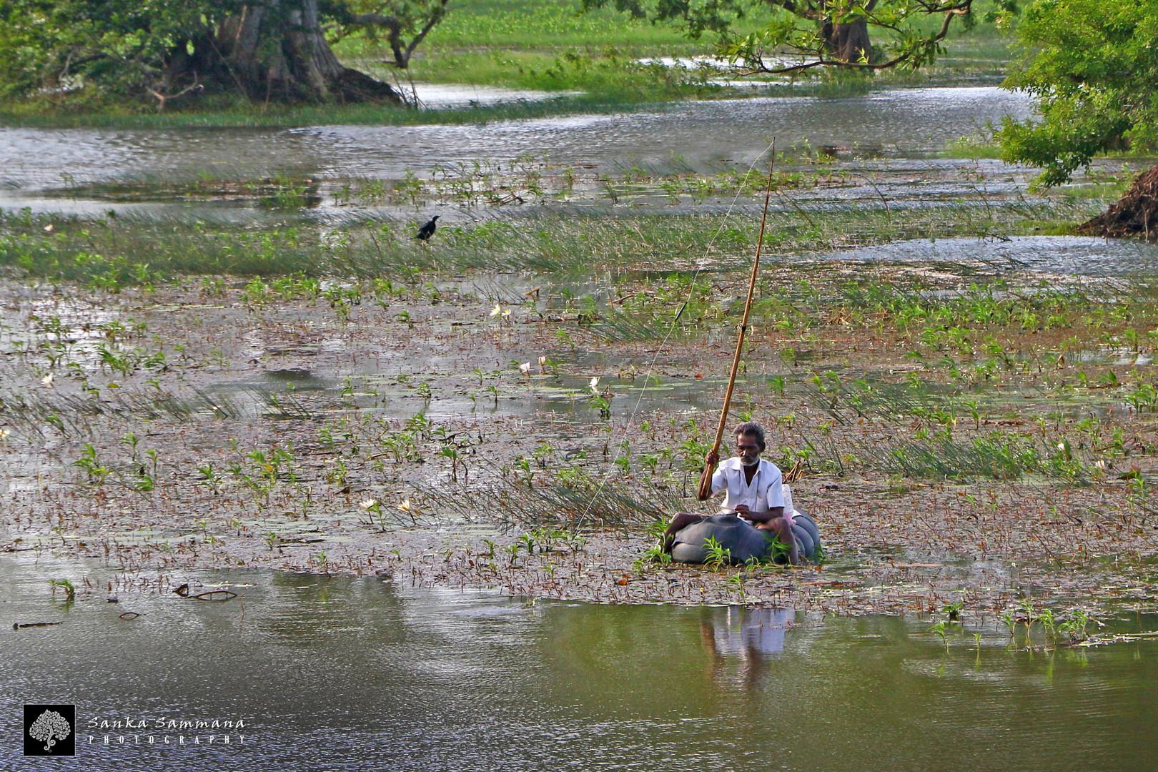 Fishing at the Galkadawala Lake.