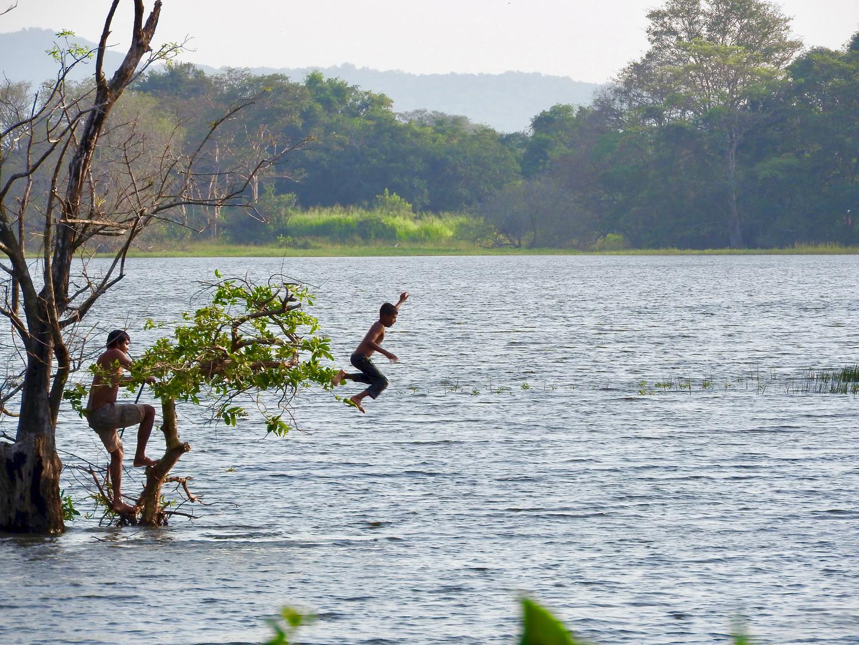 Comaraderie. Galkadawala Lake.