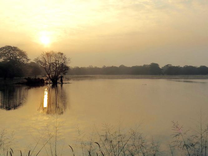 Galkadawala Lake (tank) at dawn.