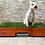 Thumbnail: GrassBox Pasto Natural 100 x 50 cm