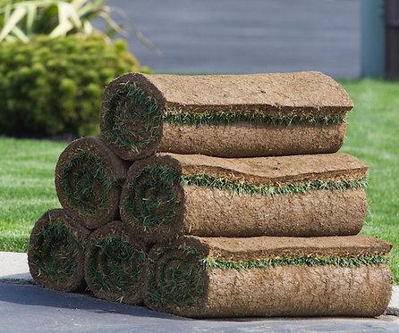 Pack 6 Repuestos Pasto Natural