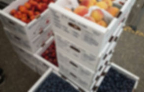 wholesale_fruit.jpg