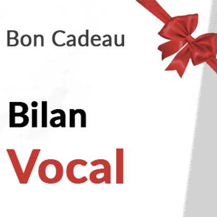Bilan Vocal 1h30