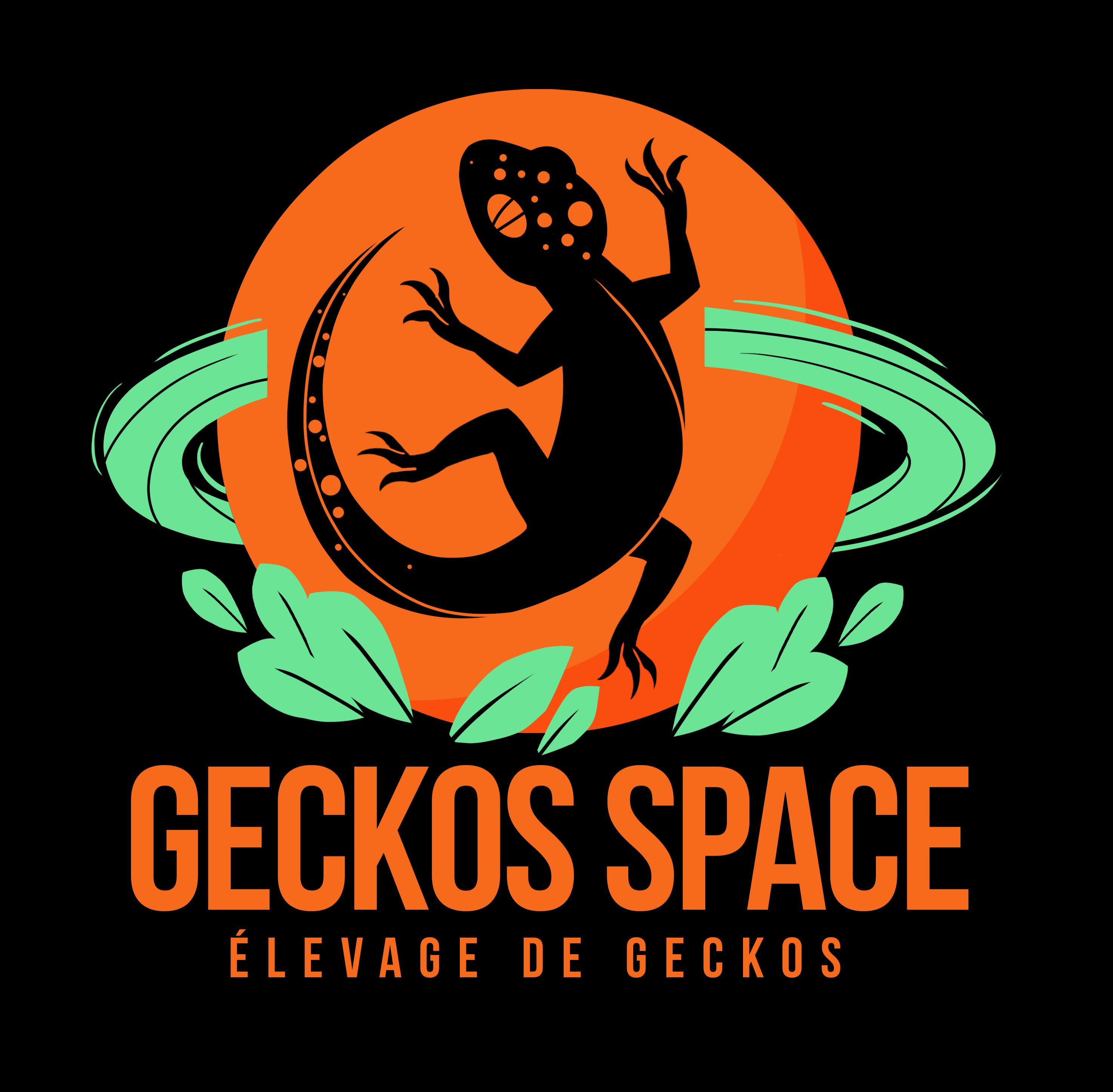 Logo_Geckos_Space_fond-noir