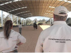 Warm Welcome to Australian Equine Institute as 2021 Show Jumping Sponsor!!