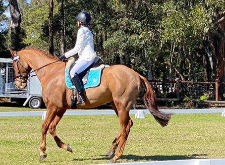 Happy Day of Colourful Dressage, Results and Some Photos!