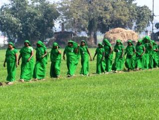 ग्रीन ग्रुप से महिलाओं को सशक्त बनाकर गाँवो में उम्मीद रोपते 'होप' समूह के छात्र-छात्राएं