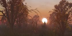 Egzo Sunset