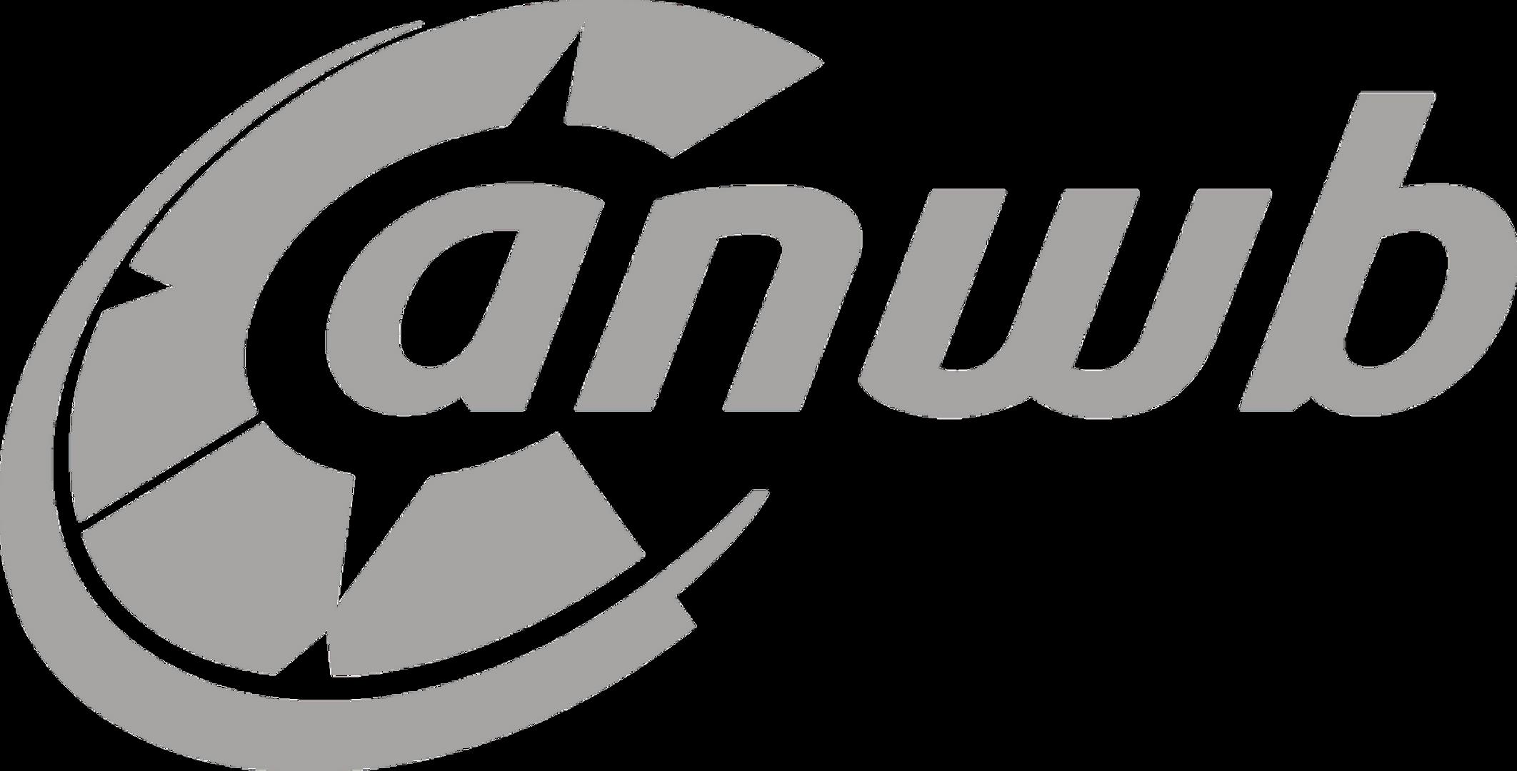 grey-ANWB-Logo.png