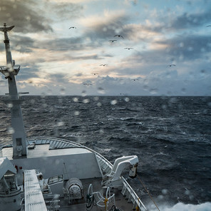 Navigating through uncharted waters: from crisis management to forward-looking
