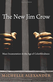 The New Jim Crow Pic.jfif