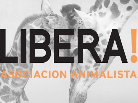 La Asociación Animalista LIBERA! se adhiere a la firma del Pacto de Teguise