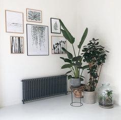 woonkamer planten en schilderijen interi
