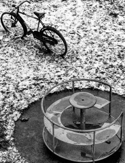 Photograpick Alon Melamed --13