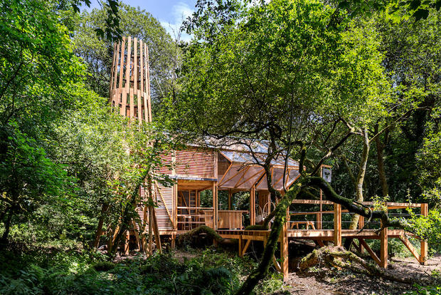 Timber frame woodland structure in Cornwall