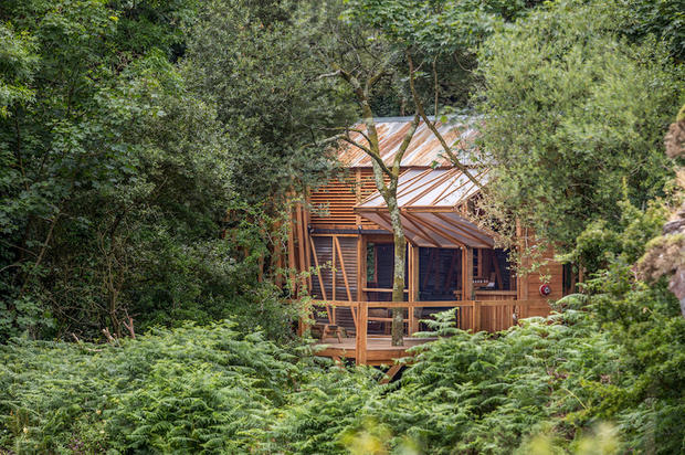 Off-grid eco architecture in the woods