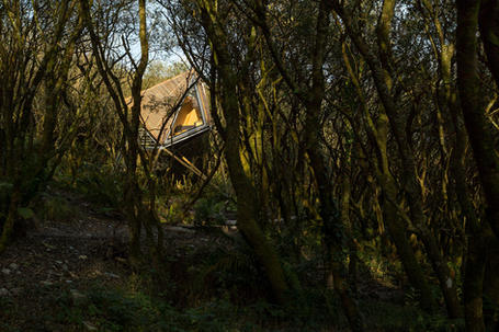 Architectural treehouse in open countryside