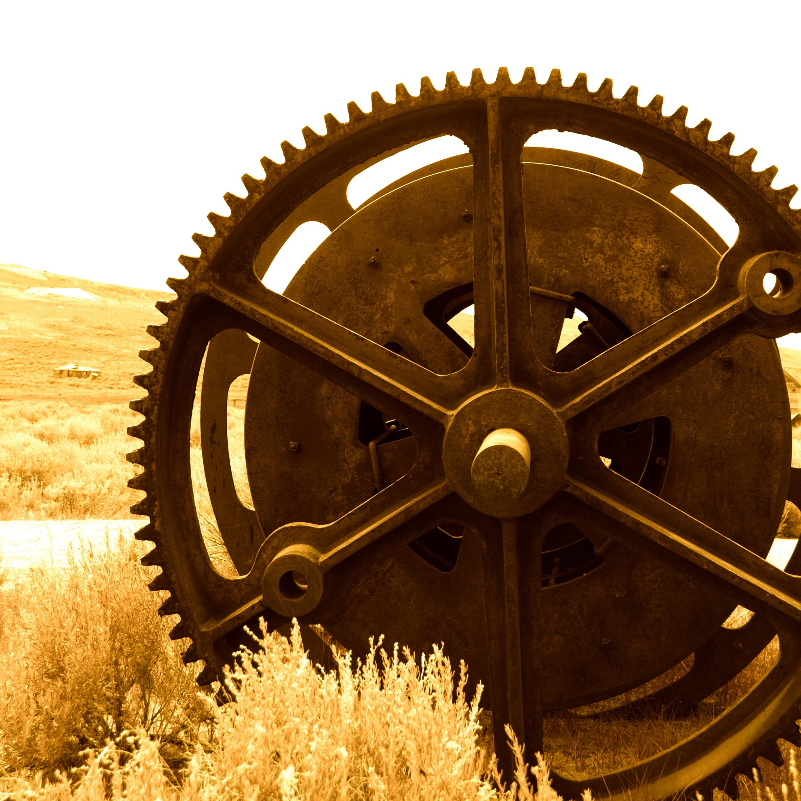 Gear Wheel - Bodie